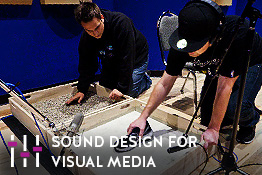Sound Design for Visual Media Program
